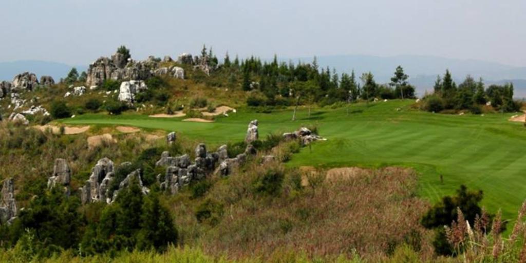 Stone Forest Yufeng Ridge
