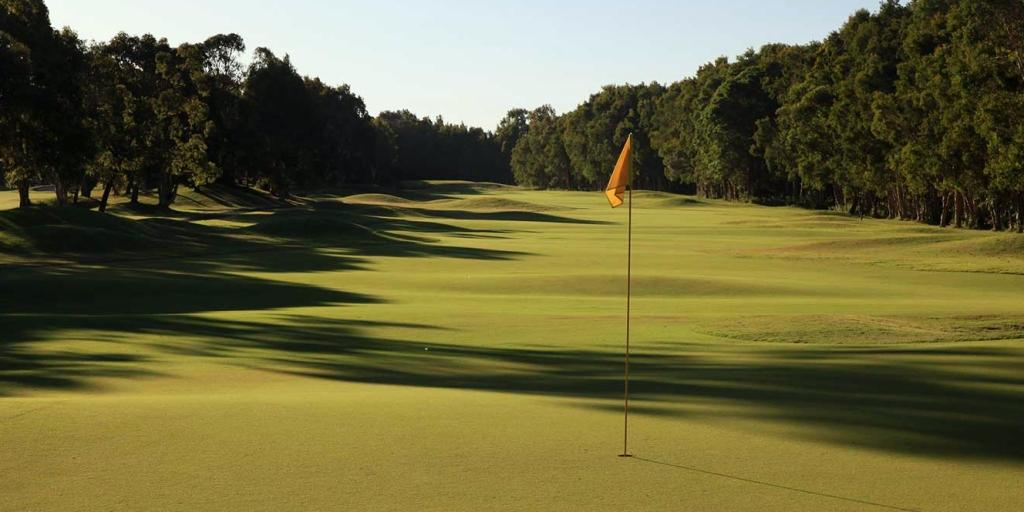 Twin Waters GC: Featuring tree-lined fairways intercepted with hollows